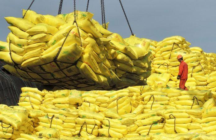 bagged rice breakbulk 2